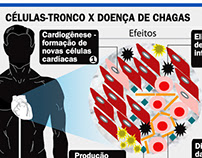 Infográfico feito para o Jornal do Brasil