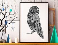 Zentagle Parrot
