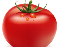 How to Illustrate a Tomato Using  Illustrator