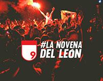 #LaNovenaDelLeón - Aguardiente Nectar