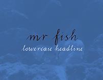 LRC Type - Mr Fish (Free)