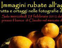 EXPO 29/2/2012 Immagini rubate all'agricoltura