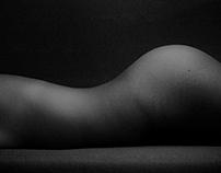 Les formes du corps humain