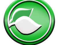Be Green Carpet Clean