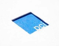 PCI Brand Identity