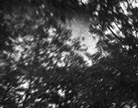 'VOJT' Photography Journey
