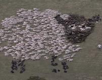 Samsung Extreme Shepherding
