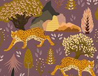 Iberian Lynx - Pattern