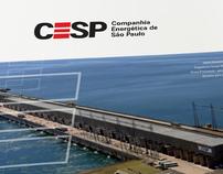 CESP | 2008 Annual Report / Relatório Anual