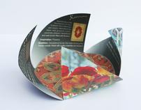 Iranian Rug Brochure