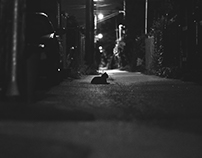 Night wanderers.