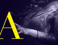 Austinmer Website Redesign
