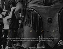 50 Historias en Tinta