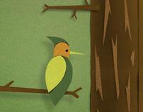 Fresh&Easy Storyboards
