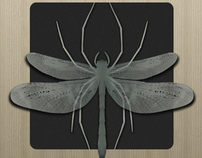 Spiderfly Studios Business Card Concept