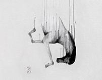 Falling Horses