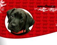Ração para cachorro | Pet