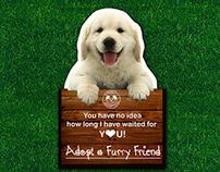 Adopt A Furry Friend Brochure
