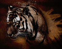 Night Tiger