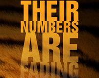 Their Numbers are Fading