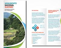 Brochure Guayabo - CIC