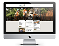 Amara Mining Corporate Website