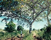 bukwe village.