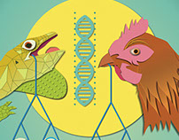 Anole & Chicken DNA