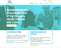 CTEQ - Website