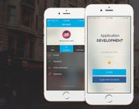 Custom Application Development Services | Web Page
