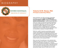 VisionSpot Consulting - CV & Resume