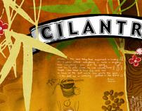 Cilantro Corporate Identity