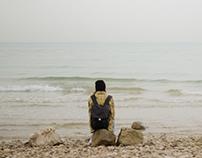 السديم - The Mist poster