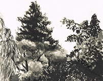 Jardins/ Gardens (fieldsketching)