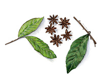 Bay Leaves and Star Anises