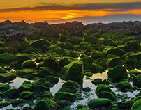 Green rocks over the Atlantic