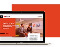 IT company website concept