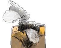 Alma de mosca