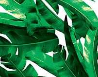 Bold Palm Print