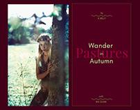 wander in pastures autumn