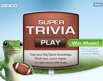 GEICO Super Bowl Campaign
