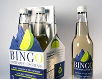 Bingo Homemade Ginger Ale