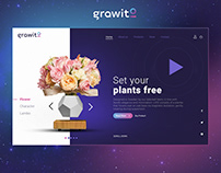 Grawito Website Interface