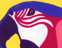 36 Species - Illustration