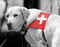 IRO 14 Search & Rescue Dog World Championship identity