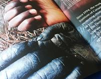 The Jane Goodall Institute: Annual Report