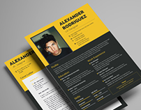 Resume Templates Bundle