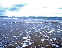 Bethells Beach / Eatern Beach