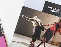 DiverseWorks Brochure & Notebooks