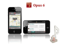 Opus 6
